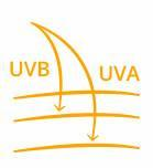 Broad Spectrum UVA/UVB